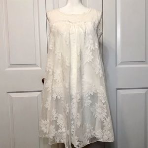 • live and let live Ivory Lace Daisy Dress •